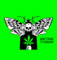 banner for legalize cannabis with fictional person vector image