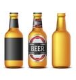 Bottle beer vector image vector image