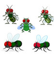 cartoon green fly collection set vector image vector image