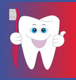 cartoon root human tooth vector image