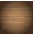 Flies on a desktop vector image