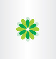 fresh flower with green leaves vector image vector image