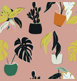 house plants decoration home floral pattern hand vector image vector image