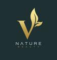 letter v luxury letter logo design icon vector image