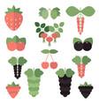 set juicy berries set juicy berries vector image