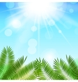 Summer Sunny Natural Background vector image vector image