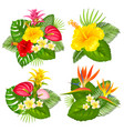 tropical bouquet set vector image