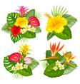 tropical bouquet set vector image vector image