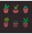 Hand Drawn Cactus Set vector image