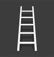 ladder on transparent background vector image