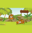 scene with two sad tigers in park vector image