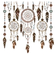 Set Dream Catcher feathers beads cobweb vector image