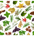 spice and herb seamless pattern background vector image vector image