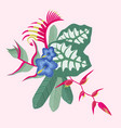 tropical flowers and leaves bouquet vector image vector image