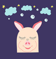 amusing hand-drawn pig with clouds and stars vector image