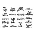 autumn hand written letteringlwords and phrases vector image