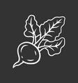 beet chalk icon vector image vector image