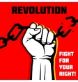 freedom revolution protest concept vector image vector image