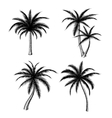 Hand drawn palm trees sketch set vector image vector image