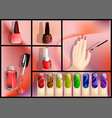 nail polish set vector image