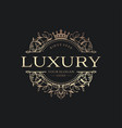 royal luxury logo design template vector image