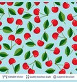 seamless pattern with cherries and green leaves vector image