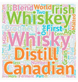 Some Facts About Whiskey Or Whisky text background vector image vector image