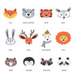 animals muzzles and portraits fox and polar bear vector image