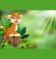 cartoon happy leopard on tree stump with green pla vector image vector image