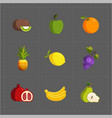 colorful fruit icon set on grey background vector image