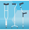 crutches set physiotherapy vector image