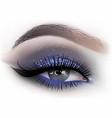 fashion woman eye makeup vector image vector image