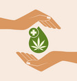 hand holding oil drop with a marijuana leaf vector image vector image
