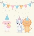 happy birthday animals party hats gift confetti vector image vector image
