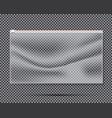 transparent nylon or polyethylene bag with lock vector image