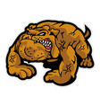angry bulldog mascot cartoon character vector image