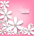 beautiful background with white spring flowers vector image vector image