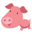 cute pig with big head on white background vector image