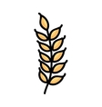gluten leaf isolated icon design vector image