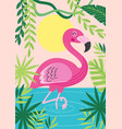 pink flamingo in tropical nature vector image