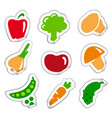 stickers of vegetables vector image