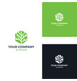 tree leaf icon design template vector image vector image