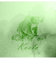 vintage of a green watercolor koala bear on the vector image vector image