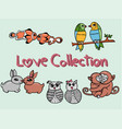 Beauty love collection