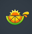 fruit nutrition fresh sunny day design element vector image