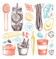 healthy life sketch collection vector image vector image