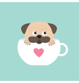 Pug dog mops paw sitting in big cup with heart vector image vector image