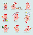 set little funny pig chinese new year the year vector image