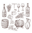 sketch wine set grape wine bottles and wineglass vector image