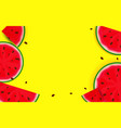summer background from watermelon vector image vector image
